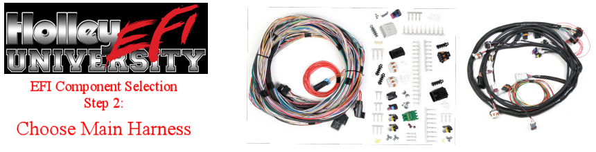 Wire Harness Component Guide on speaker components, electronic circuit components, wire alligator clips electrical, torque converter components,